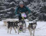 Dogscooter Mödingen