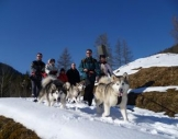 Husky-Trekking Clausthal-Zellerfeld