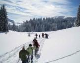 Schneeschuh-Wanderung Feldberg