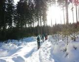 Schneeschuh-Wanderung Wernigerode