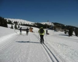 Skikurse Feldberg