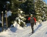 Skikurse Schmiedefeld am Rennsteig